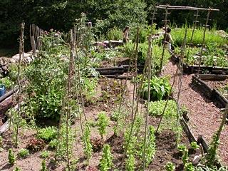 Middeleeuwse tuin-1