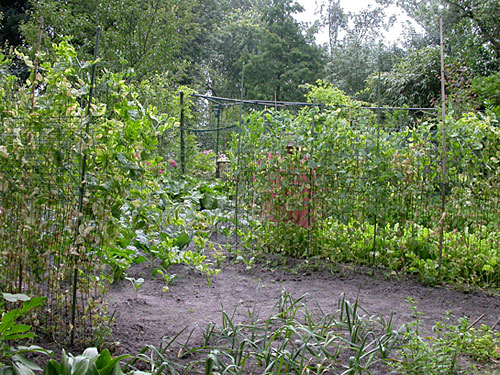 Tuin aanleggen blog archive verslag open tuinen 2008 - Moderne tuinier ...